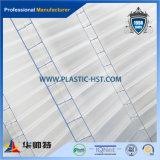 Strato 100% della cavità del PC del policarbonato di Lexan (TAV PC01)