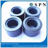 Anello sinterizzato magnete duro di /Ceramic del ferrito per il motore facente un passo