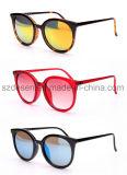 Óculos de sol feitos sob encomenda elegantes novos por atacado das mulheres do PC