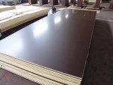 De 1250*2500*21mm Birch Core Film Browm face contre-plaqué avec 72 heures colle phénolique, Birch Core contreplaqué marine