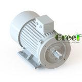 generatore magnetico di 3kw 800rpm, generatore magnetico permanente di CA di 3 fasi, uso dell'acqua del vento con il RPM basso