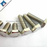 Bullone della sfortuna dell'acciaio inossidabile A2-70 A2-80