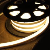 Blanco caliente de neón de AC220V 110V SMD2835 LED
