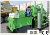 Gekennzeichnete erneuerbare Energie 300 Kilowatt-Biogas-Generator-Set