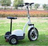 道の電気Zappy 3プロ屈曲3の車輪のスクーターを離れて