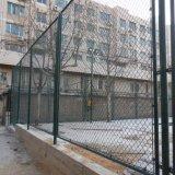 プラスチックPVC運動場のための上塗を施してあるチェーン・リンクの塀