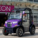 2 Sitzer Electric Smart Car