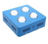 2개의 채널 통신로는 LED를 증가하거나 플랜트 빛 또는 램프 증가한다