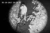 防水手段によって取付けられる夜間視界CCTVレーザーPTZのカメラのセキュリティシステムの軍隊