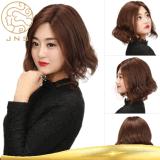 Реми удлинитель волос волос человека кружевной Wig