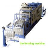 Envase disponible de Thermocol de la espuma del picosegundo de la venta caliente que forma la máquina