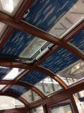 Tussen de Integrale Cellulaire Schaduwen van het Glas voor Dubbel het Verglaasde Afbaarden