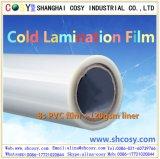 Matt ou film froid auto-adhésif lustré de laminage de PVC