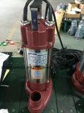 BADEKURORT versenkbare Wasser-Pumpe für Trinkwasser-Garten-Bauernhof