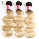 Venda por grosso de onda do Corpo Pre-Coloed Cabelo humano Omber Color 1b/613 Loira Remy dois pacotes de extensão de cabelo de tom (TFH18)