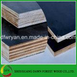 構築の具体的な型枠のための黒いフィルムの表面合板