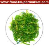 Gefrorene Meerespflanze Salat-Betriebsbereit, Teller zu essen