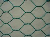 """1つの""""網の穴のサイズによって電流を通される六角形の金網"""