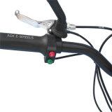 500W~1500W, das elektrischen Mobilitäts-Roller mit Scheibenbremse (MES-800, faltet)