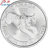 カナダのためのカスタマイズされた高品質の円形のプルーフコイン