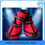 Schoenen Van uitstekende kwaliteit van de Hond van de Laarzen van het Huisdier van de fabrikant de Waterdichte