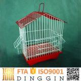Fenster-Vogel-Zufuhr-Vogel-Rahmen Wholesale