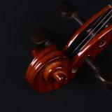 4/4 Handcrafted akustischer Violinen-Starter-Größengleichinstallationssatz mit hartem Fall, Bogen, glattes Blau