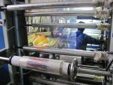 4 couleur 600mm de large Machine d'impression Flexo (CE)