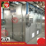 中国からの熱気の循環のレモン食糧乾燥機械