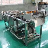 De water Bewaarde Wasmachine van de Luchtbel voor Groente