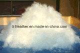 Lavé vers le bas l'oie blanche 95% USA-2000 standard