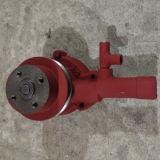 Yangdong Y385t Y385t-6-11103 Jinma 254 pezzi di ricambio della pompa ad acqua del trattore