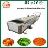 Chauffage à vapeur de fruits et légumes blancheur de la Machine automatique