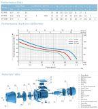Jet-60s 0.5HP Prix de la pompe à eau