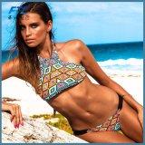 L'alta biancheria intima del bikini di modo del collo ha impostato per le donne