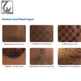 Hoja de la decoración del color del acero inoxidable del material de construcción de los Ss