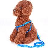 Cat Collar de perro arnés y correa ajustable de nylon de Tracción Animal Cat Kitten Halter Collar Gatos Productos para la mascota de la correa de cables