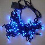 Indicatori luminosi neri decorativi del riso della stringa del collegare 10m LED di festa