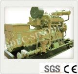 China 600kw conjunto gerador de gás de combustão