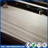 Grado di Linyi un'impiallacciatura ricondizionata bianca affettata del fronte del taglio 4X8