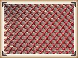 Netwerk van de Gordijngevel van de Legering van het aluminium het Decoratieve