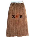 PU nehmen die Haar-Extension auf Band auf, die europäisch ist,/das indische/brasilianische erhältliche Haar-Proben