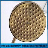 Insieme d'ottone dell'acquazzone della testa di acquazzone di pioggia del bagno della stanza da bagno del bicromato di potassio