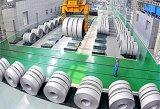 Bobina dell'acciaio inossidabile (laminata a caldo) (304L)