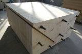 Venda quente madeira compensada curvada usada para a construção e a outro necessidade