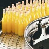 Materialtransport-Nahrung&Beverage Produktions-Fließband modularer Bandförderer