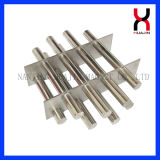 Rare Strong Earth Neodymium Round Double-To bush-hammer Magnetic Filter