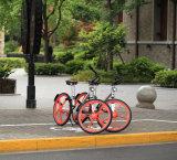 عامّ درّاجة درّاجة يشارك نظامة مع [غبس] درّاجة تعقّب هويس 26 بوصة مع [سليد تير]