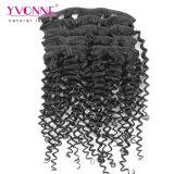 Соединенных Штатов Бразилии удлинитель волос малайзийской вьющихся волос в добавочный номер