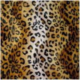 Leopardo de nieve Velboa